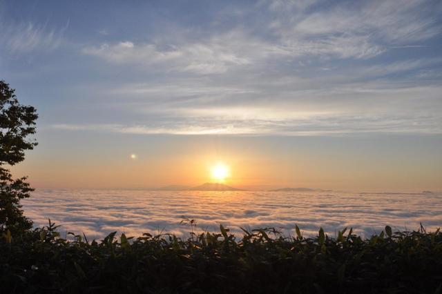 画像: 神秘的な雲海の様子