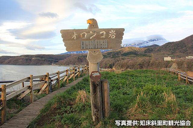 画像2: 「知床国立公園」で世界遺産の魅力、大自然を体感する