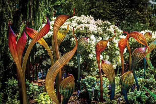 画像: 自然光を浴びて輝きを放つガラス工芸の作品群 © Chihuly Garden and Glass