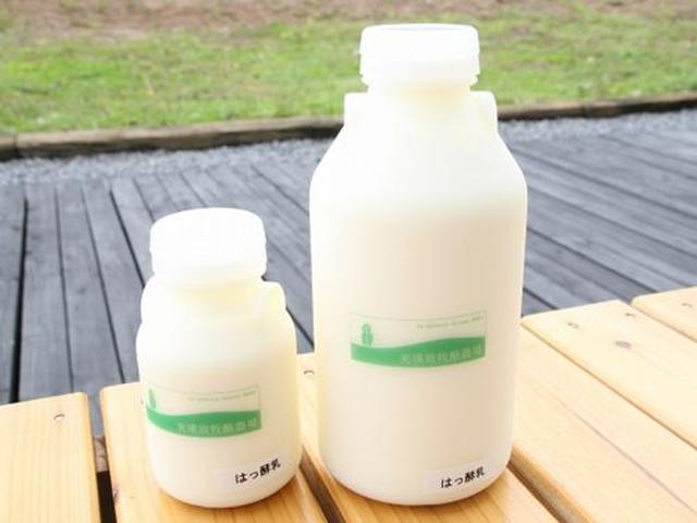 画像: 「飲むヨーグルト」も、いいですね~ねっとりと濃厚な味わいとともに、爽やかな生乳の風味が共存。
