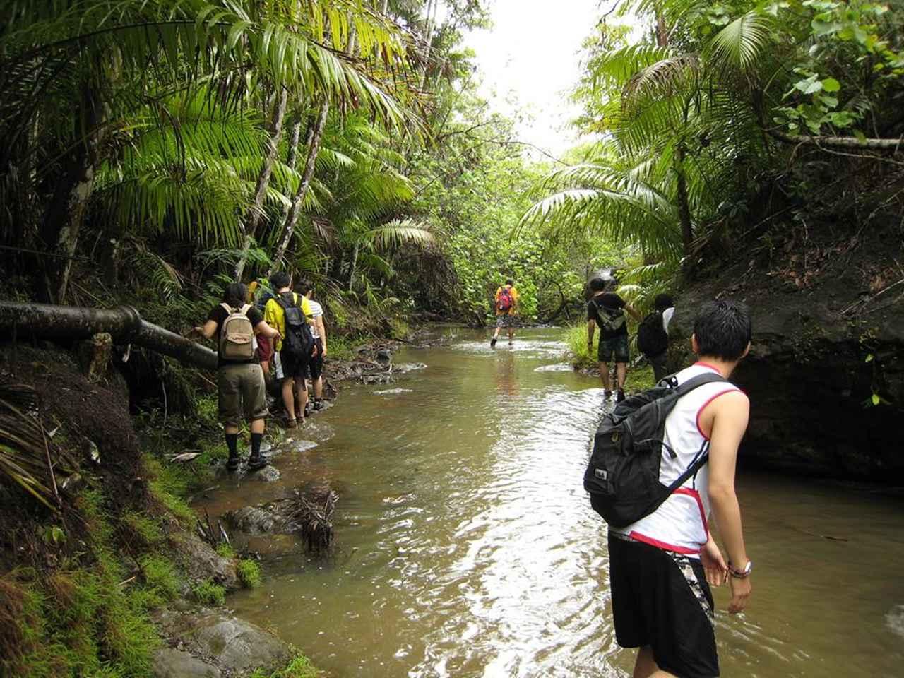 画像: ジャングル探検もグアムを楽しむ醍醐味のひとつ