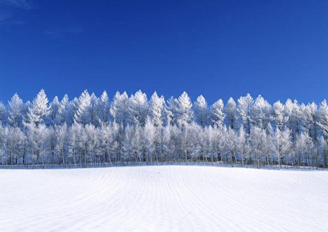 画像: 2.【北海道の気温と気候】1年を通してベストシーズン。しっかりと寒さ対策を
