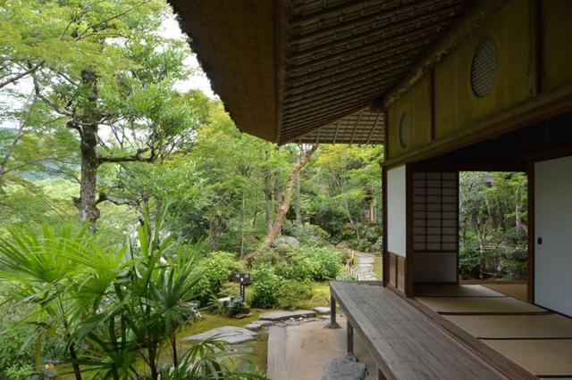 画像: 臥龍院の縁側から臨む、四季折々の庭の景色を借景としています