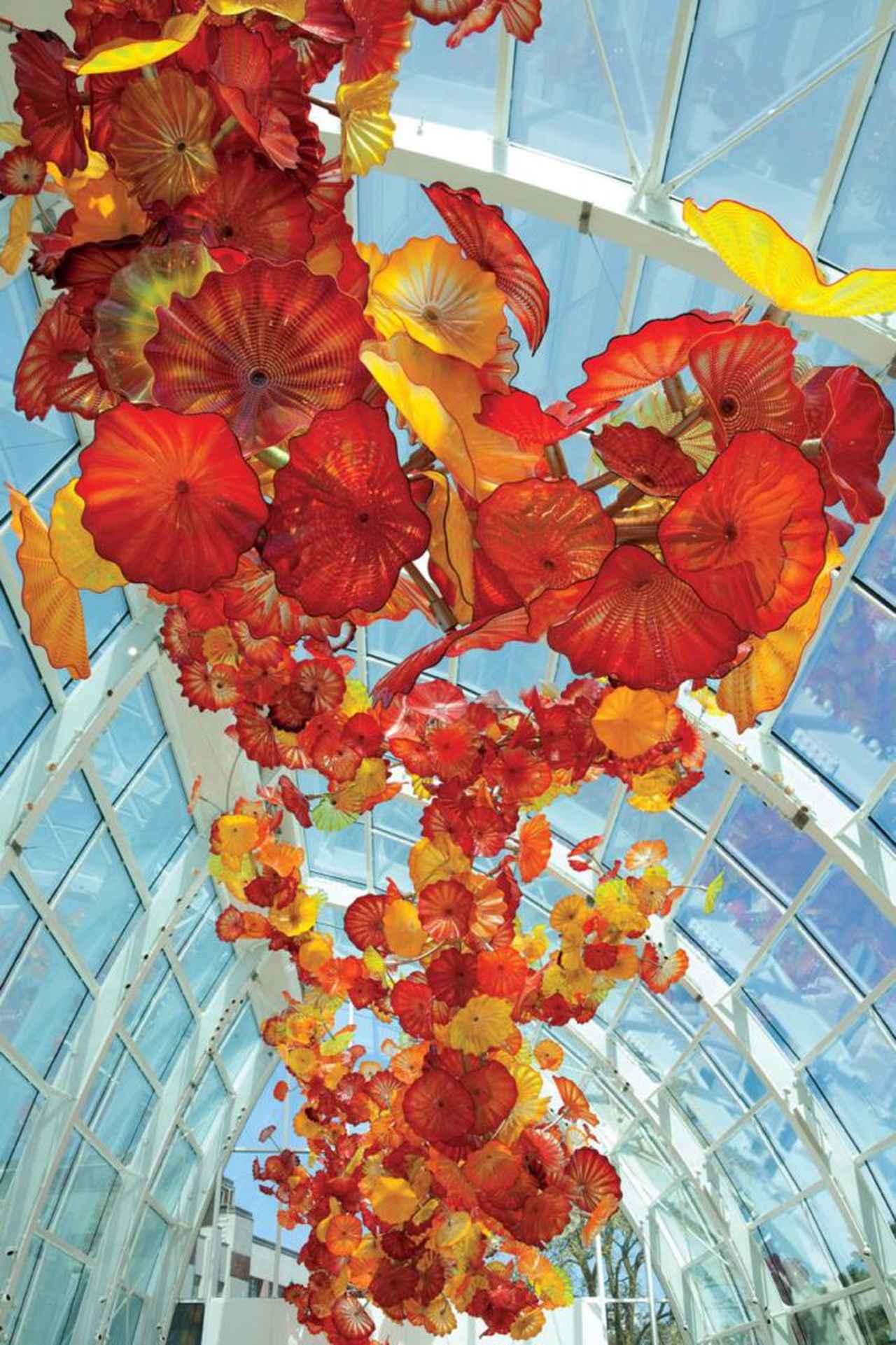 画像: チフーリ・ガーデン&ガラス ©Chihuly Garden and Glass