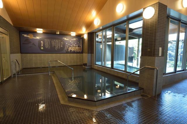 画像: モール泉を堪能できる内湯。露天風呂には潮湯も備えています