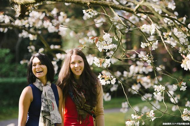 画像2: 「桜まつり」も開催される春のバンクーバーへ。