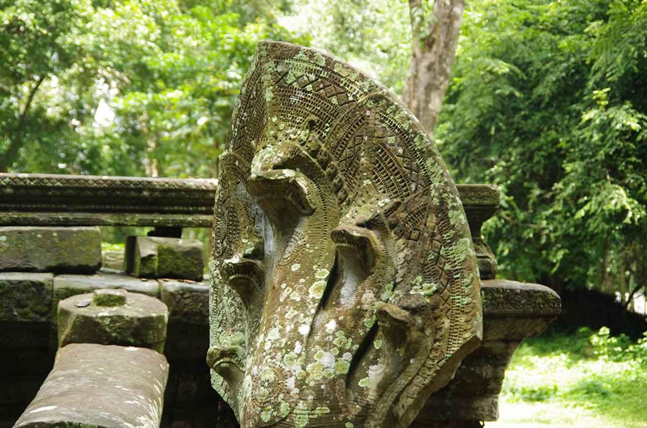 画像1: 「アンコール」を象徴する2大遺跡を歩く