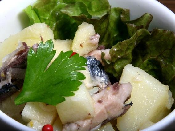 画像: 「じゃが芋と鯖節のサラダ」。屋久島ならではの鯖節の良さが活きています。