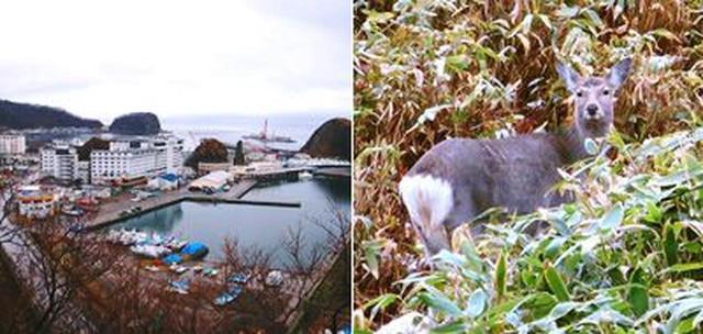 画像2: 北海道・知床でご当地グルメを堪能。はんつ遠藤さんが2泊3日グルメの旅へ