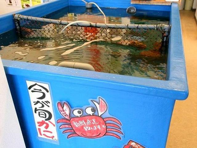 画像: 店内に設置された大きな水槽にはカニが!北海道ならではの産地の違う昆布も販売なさっています。