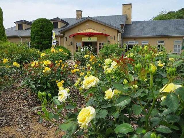 画像: 『淡路ファームパーク イングランドの丘』。広大な敷地に遊びの広場、お花畑、野菜の収穫体験など、様々な顔を持つテーマパーク。