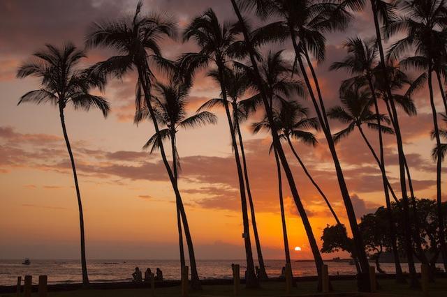 画像1: クチコミを参考に、ハワイ島で感動体験を。