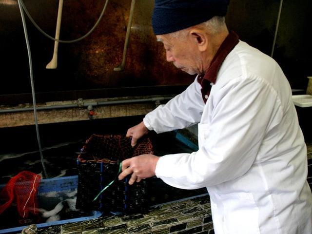 画像: 戦前は、さざえやはまぐりなどの貝類の卸だったんです」と、2代目の木村紘一さん。店内には生け簀があり、活魚や貝類がわんさか。