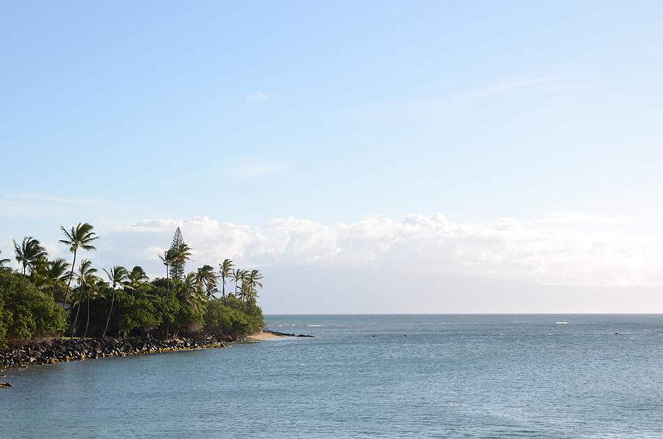 画像: ラハイナから北へ少し、カアナパリよりさらに先へ車を走らせれば、カパルアの素朴で美しい海辺が次々と現れます