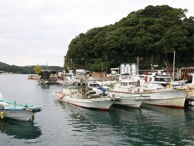 """画像: 全国で""""かき小屋""""が大ブームとなっておりますが、その先がけ。牡蠣養殖卸・直売としては創業約90年の老舗です。"""