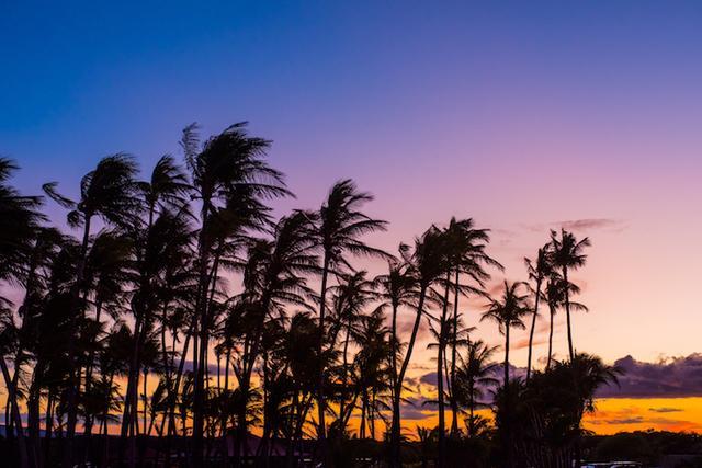 画像: ハワイ島ノースエリアのパワースポットは癒やしの宝庫