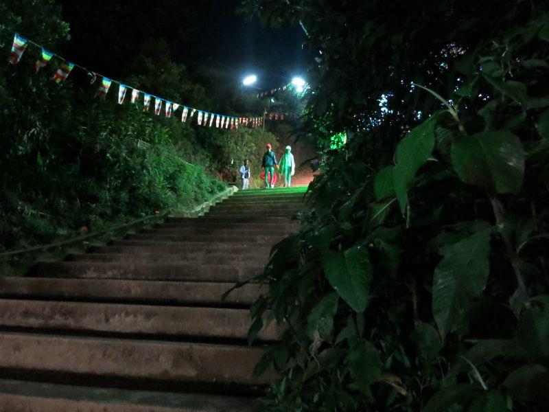 画像: ほぼ全道が階段で整備されている。その数なんと7,364段!