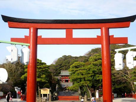 画像2: 鎌倉・江の島でご当地グルメを堪能。はんつ遠藤さんが2泊3日グルメの旅へ