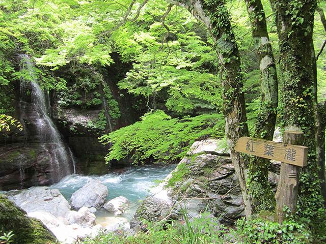 画像: 8:30 県立自然公園にも指定されている景勝地、中津渓谷を散策