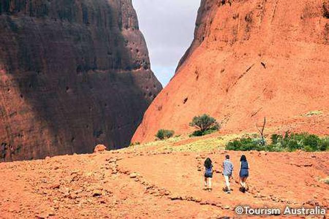 画像3: ウルル-カタ・ジュタ国立公園