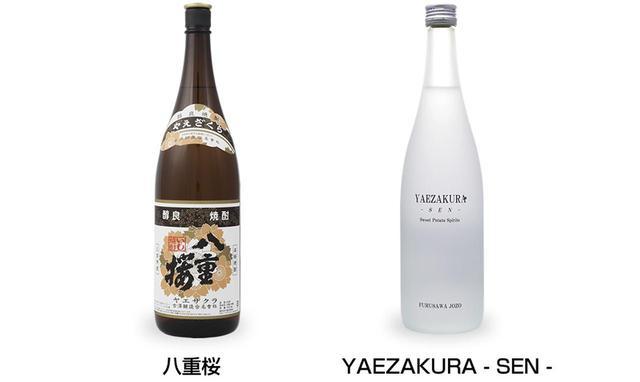 """画像10: 宮崎の""""よかもん""""を探す旅!"""