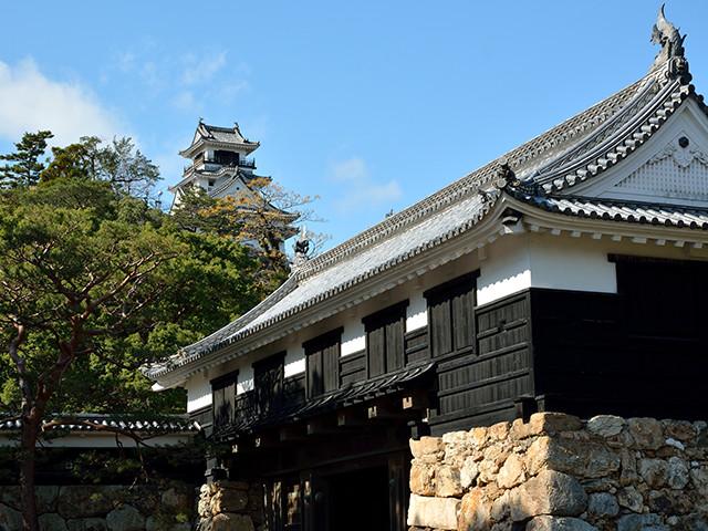 画像3: みどころ満載。高知市~足摺まで清流と絶景スポットを巡る3日間!