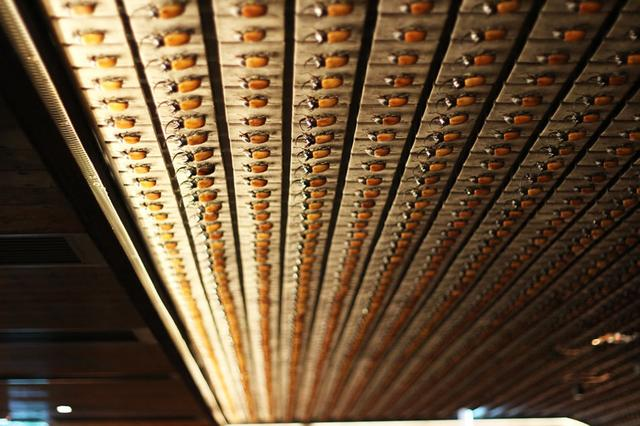 画像: 天井や壁に並ぶカブトムシの標本