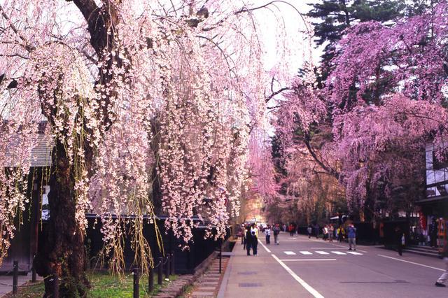 画像5: 秋田内陸線で行く 秋田・青森の食と文化を堪能!大満足の2日間