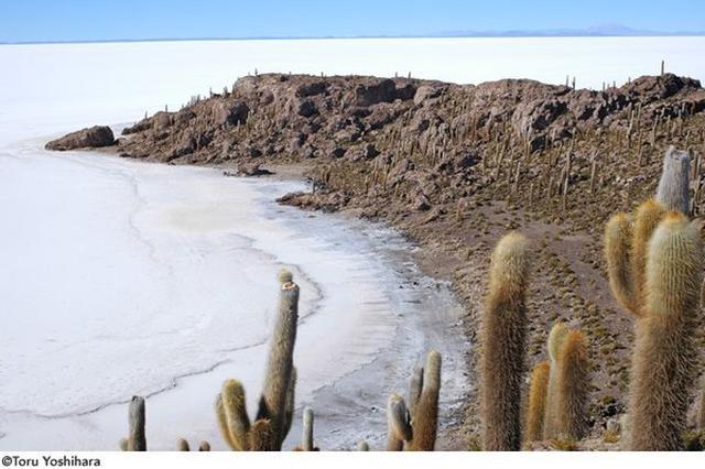 画像4: 世界が憧れる絶景の地へ ボリビア・ウユニ塩湖の太陽と月