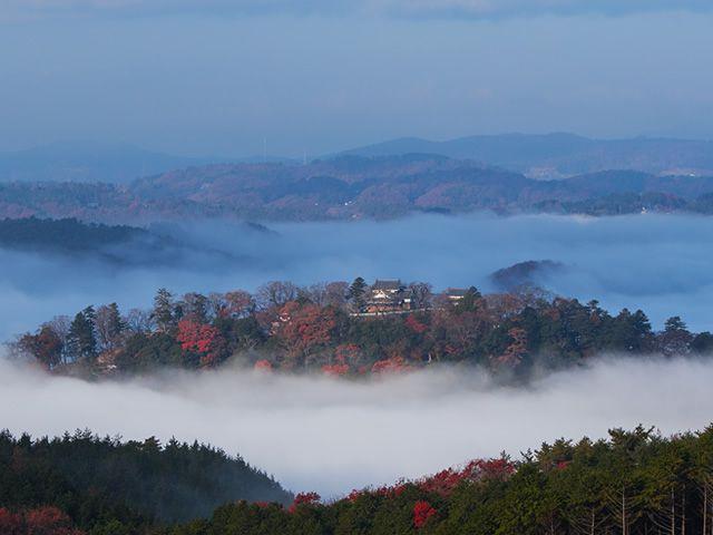 画像1: 山城と紅葉の晴れらんまん秋旅。車で巡る2泊3日のモデルコース