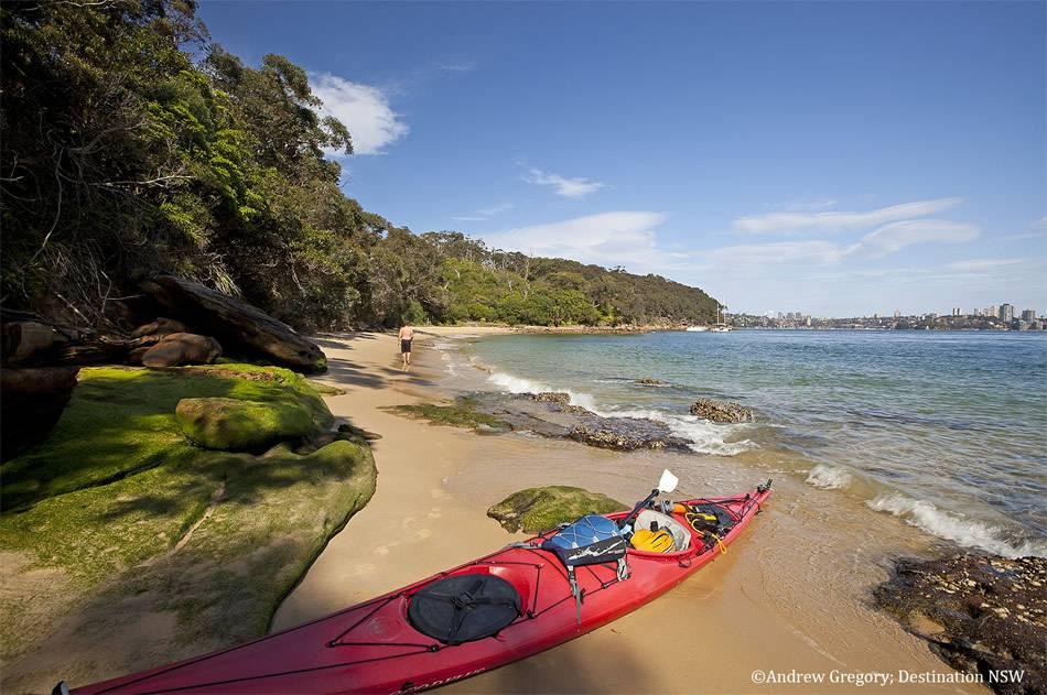 画像: Sydney Harbour Kayaks(シドニー ハーバー カヤックス)