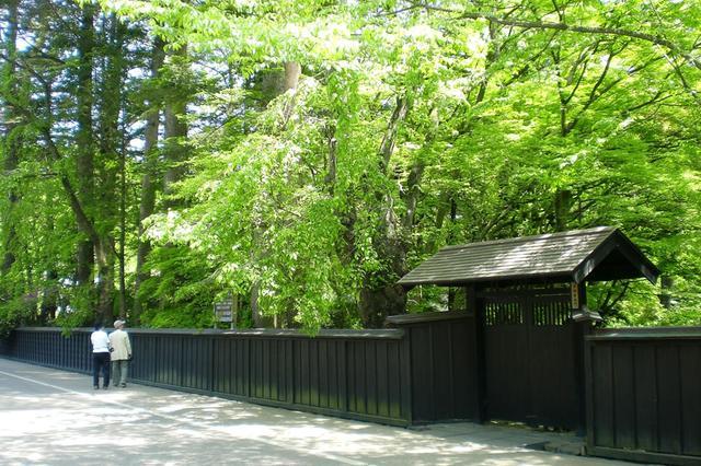 画像6: 秋田内陸線で行く 秋田・青森の食と文化を堪能!大満足の2日間