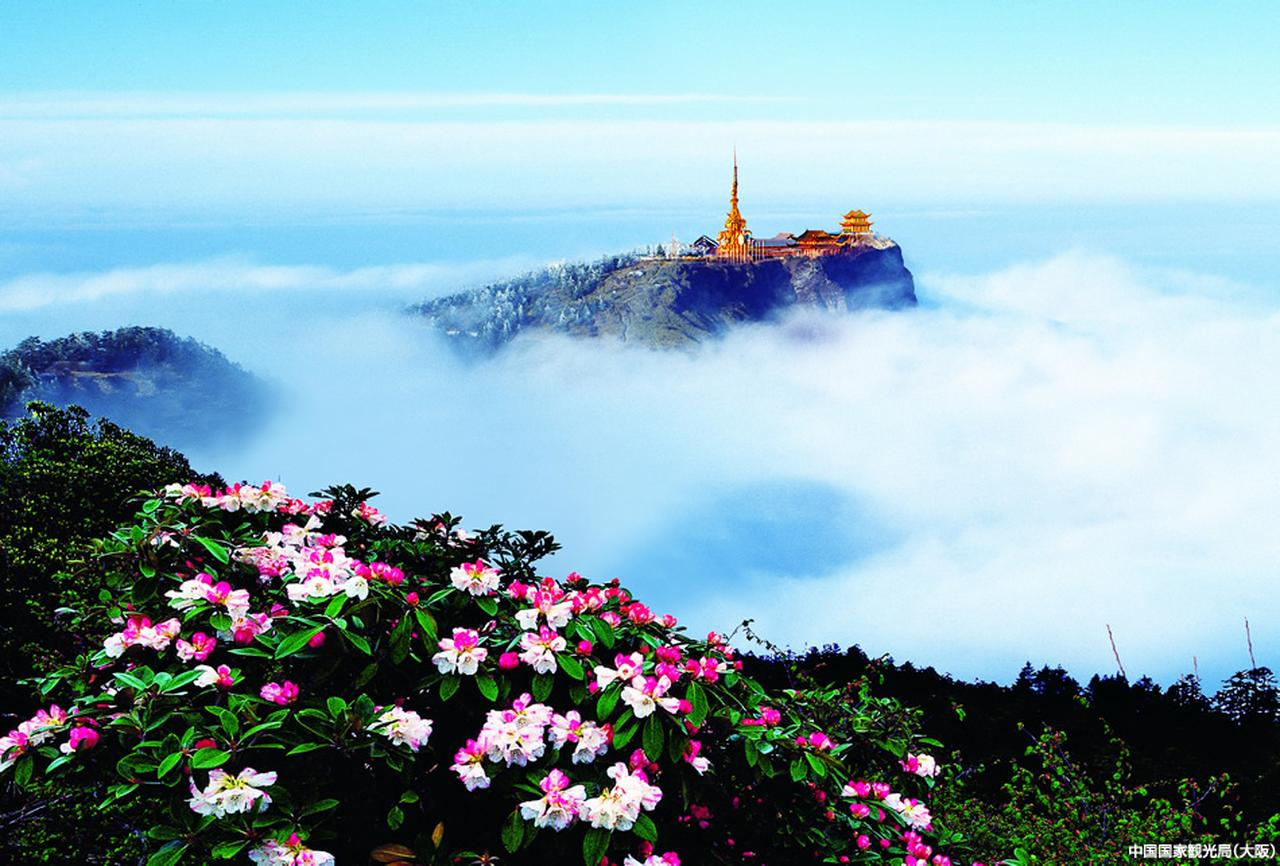 画像2: 峨眉山と楽山大仏を包む森の「緑」