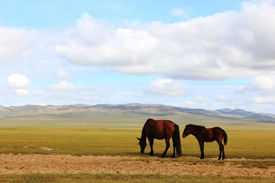 """画像3: """"遊牧民""""気分で過ごす絶景リゾート「テレルジ国立公園」"""