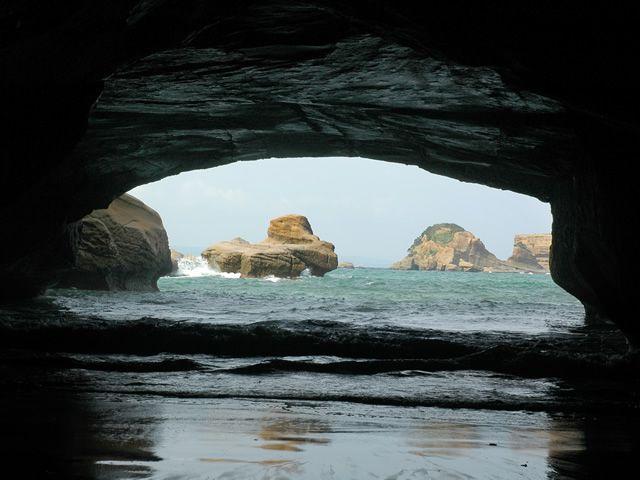 画像2: 感動の自然大満喫2泊3日 よくばり★しま旅 種子島・屋久島