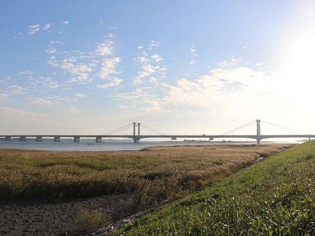 しらさぎ大橋から見る吉野川と眉山