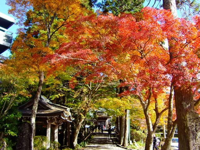 画像4: 芸術・歴史・温泉・自然・グルメ… 五感を使って楽しむ 1泊2日の箱根旅