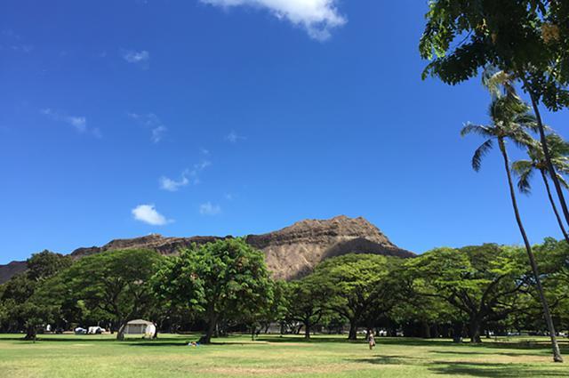 画像: オアフ島・カピオラニ公園から見るダイヤモンドヘッド。静かな公園はローカルの憩いの場。周辺でジョギングやウォーキングをする人の姿も多く見られる。