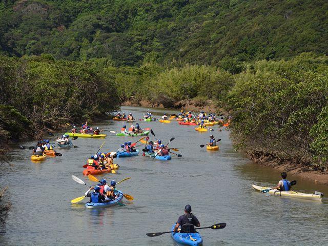 画像3: 感動の自然大満喫2泊3日 よくばり★しま旅 種子島・屋久島