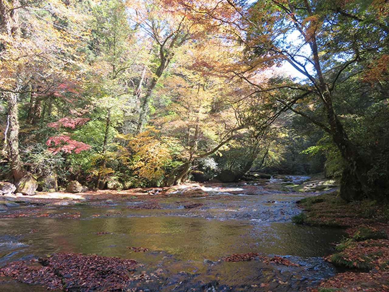 画像2: 熊本県・菊池市の自然とグルメを堪能する。1泊2日のモデルコース