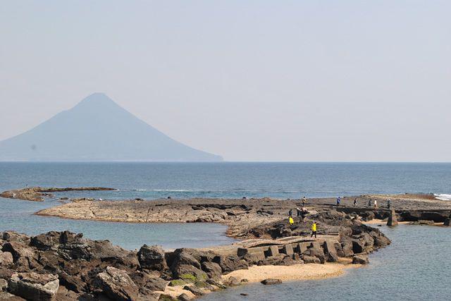 画像5: 鰹を味わう!お茶を味わう!1泊2日 鹿児島 美味しい南薩の旅