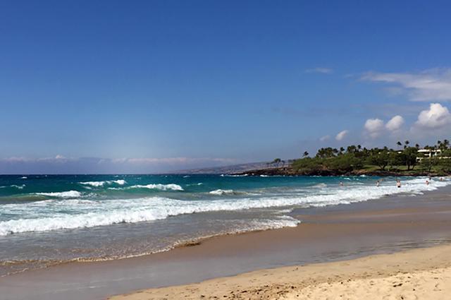 画像: ハワイ島、コハラコーストにあるハプナビーチはローカルにも人気の静かなビーチ。