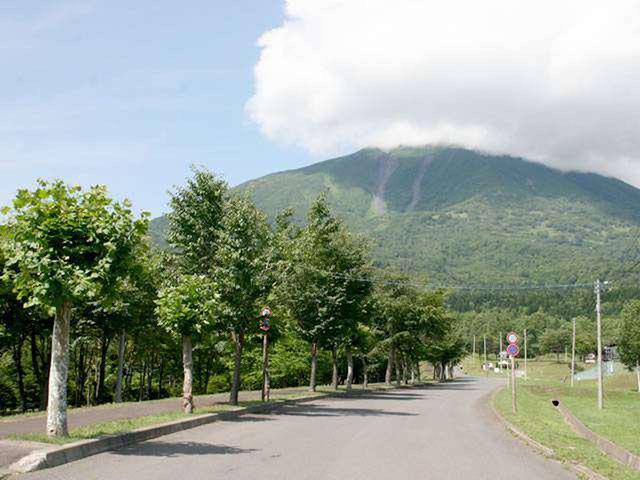 画像5: 初夏の北海道で爽快ドライブ!