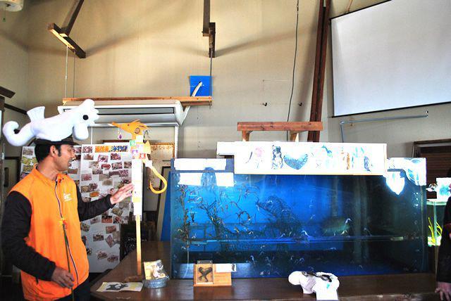 画像6: 鰹を味わう!お茶を味わう!1泊2日 鹿児島 美味しい南薩の旅