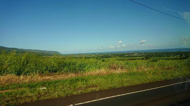 画像3: (ハワイ)現地スタッフが体験!~伝説のノースショア~