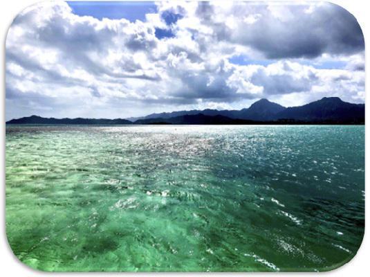 画像10: (ハワイ)現地スタッフが体験!~KBOS 天国の海®ツアー~