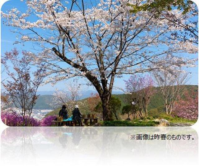 画像13: (高知)「奇跡の清流仁淀ブルーを体感!仁淀川エリアをレンタサイクルで周遊の軌跡」