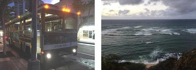 画像3: (ハワイ)~JALPAKレインボートロリー活用術~ ダイヤモンドヘッド早朝ハイキングとKCCファーマーズマーケット