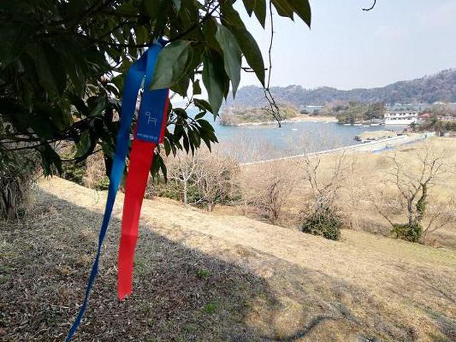画像4: (宮城)癒しと共に生きる道「宮城オルレ」~海と空を満喫する奥松島コース~