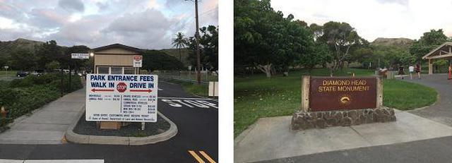 画像4: (ハワイ)~JALPAKレインボートロリー活用術~ ダイヤモンドヘッド早朝ハイキングとKCCファーマーズマーケット